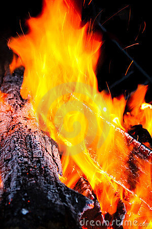 Wood log burning with flames of fire