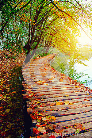 Free Wood Path In The Plitvice National Park Royalty Free Stock Photography - 68386027