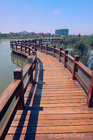 Free Wood Path On Water Royalty Free Stock Photo - 5542995
