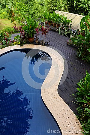 Free Wood Patio & Pool Layout With Landscaping Royalty Free Stock Photography - 28801937