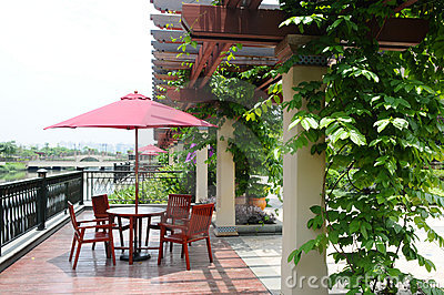 The wood pergola with climbing plant