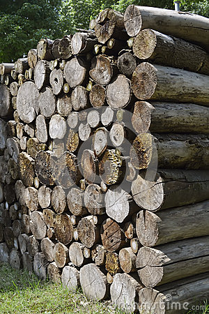 Free Wood Pile Royalty Free Stock Photography - 26799027