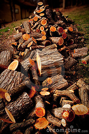 Free Wood Pile Royalty Free Stock Images - 8661639