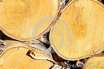 Wood pile close-up