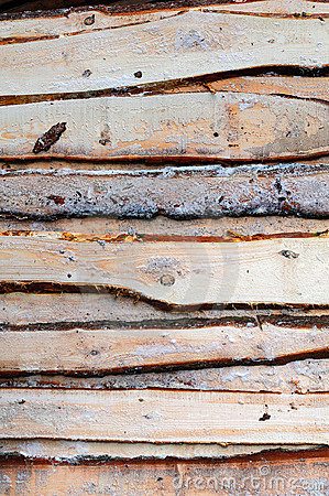 Free Wood Plank Texture Royalty Free Stock Photos - 13431018