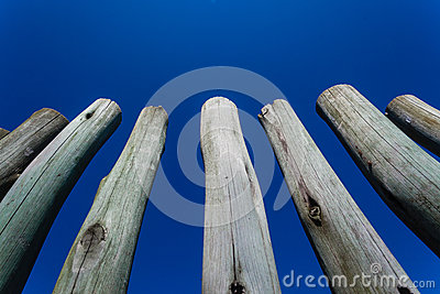 Wood Pole Fence Section
