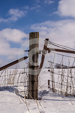 Free Wood Post In Countryside. Stock Photo - 50361650