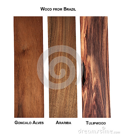 Free Wood Samples From Brazil Royalty Free Stock Photography - 90868967