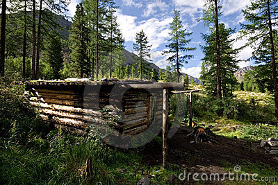 Wood shack (winter hut) in wild forest, Mountains