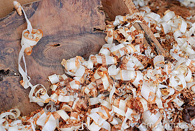Wood shavings of thuya in Essaouira