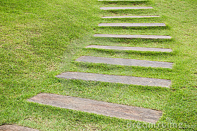 Wood step on grass.