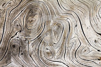 Wood Swirls Organic Background Texture