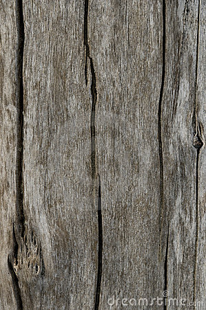 Free WOOD TEXTURE Stock Images - 14234694