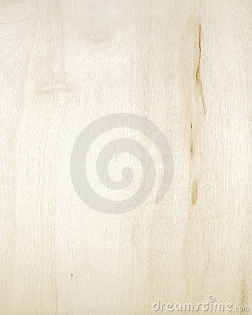 Wood texture background_birch_03