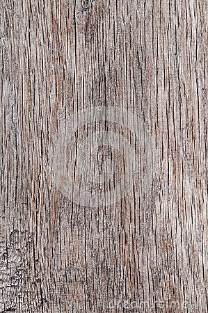Free Wood Texture Background Old Porous Dry Cracked Empty Aged Timber Rough Surface Closeup Material Colour Natural Vintage Plank Royalty Free Stock Image - 82129176