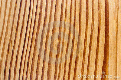 Wood Texture, Curved Regular Lines