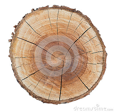 Free Wood Texture Ring Royalty Free Stock Image - 32911826