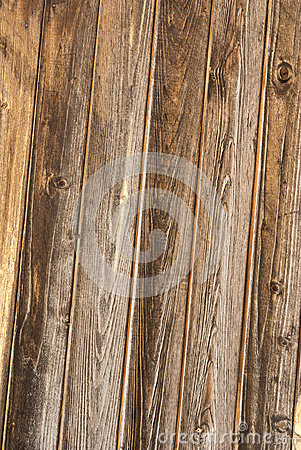 Wood texture with wood s grain.