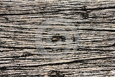 Wood texure backgound