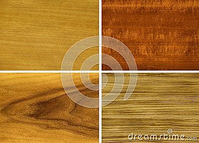 Wood, veneer: anegri, makore, teak, zebrano