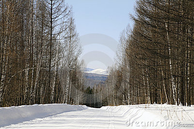 Wood winter road to foothills of Sayan mountains