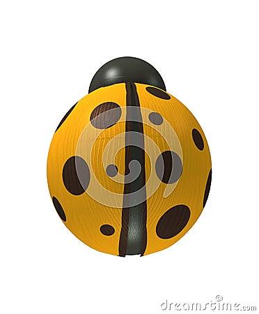 Wood yellow ladybird