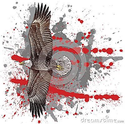 Woodcut style eagle