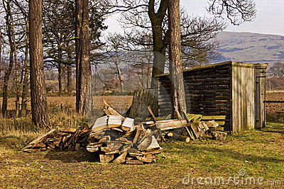 Woodcutters Hut and Timber
