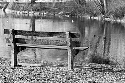 Wooden bench by lake
