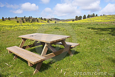 Wooden bench in the meadows