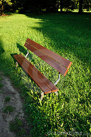Wooden bench in the park in daytime