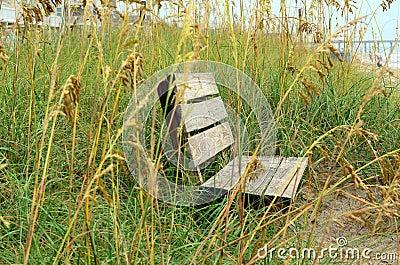 Wooden Bench Sand Dunes Sea Oats