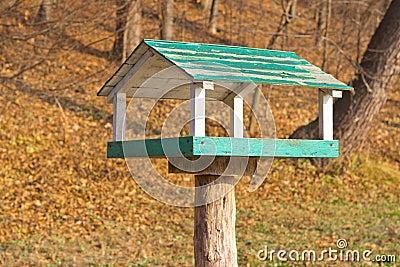 Wooden bird feeder in the park