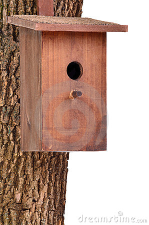 Wooden bird house(starling house)on tree trunk
