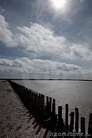 Wooden breakwater in the Wadden Sea