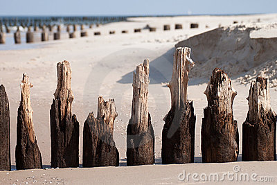Wooden breakwaters