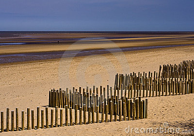 Wooden breakwaters on the beach