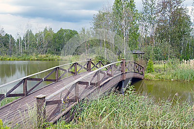 Wooden bridge 1
