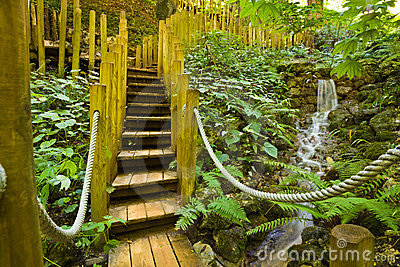 Wooden bridge and little water fall