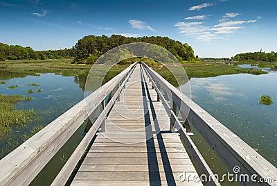 Wooden bridge in perspective