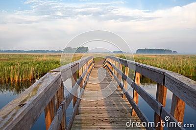 Wooden bridge through river in morning