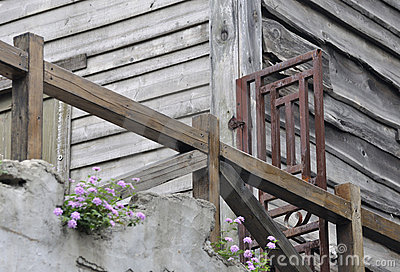 Wooden building in old style