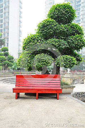 Wooden Chair in park