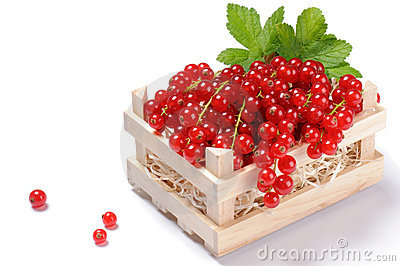 Wooden crate full of red currant