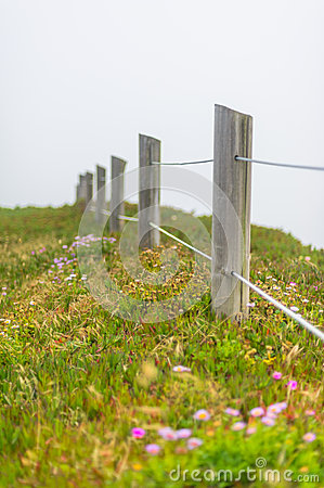 Free Wooden Fence And Meadow In The Fog Royalty Free Stock Photography - 28045437
