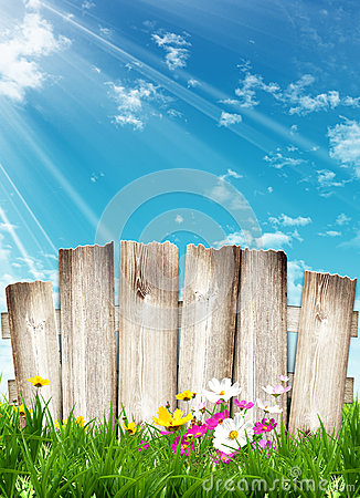 Free Wooden Fence And Spring Flowers Stock Photo - 38597210