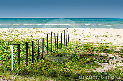 Wooden fence by the beach
