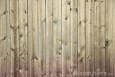 Wooden fence begun to rot from below background