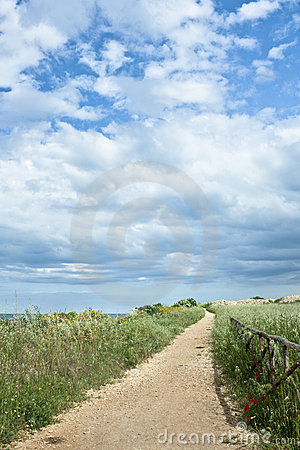 Wooden Fence On Country Road Stock Image - Image: 14203721