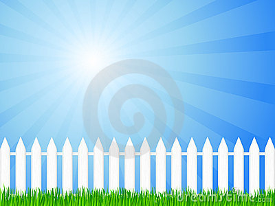 Wooden fence and grass 3